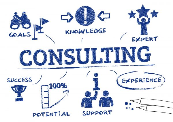 What do consultants do? A view point from Jo Chapman PBO Associate Partner